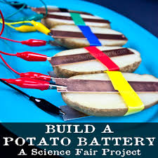 build a potato battery a circuit stem activity for the science fair