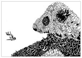 Coloring Page Adults Animals Panda Valentin Free To Print