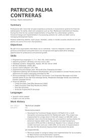 Technical Leader Resume Example
