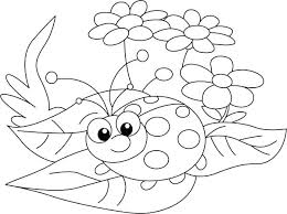 Edge Ladybug Coloring Sheets Pages To Print Pinterest