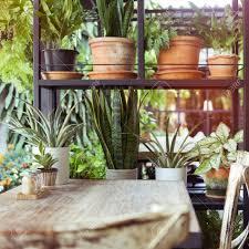 dekoration wohnzimmer interieur stil grün öko umwelt mit pflanze und baum