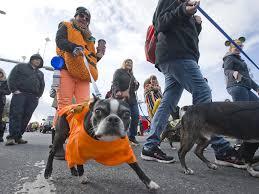 Emmaus Halloween Parade 2015 Date by Allentown Halloween Parade