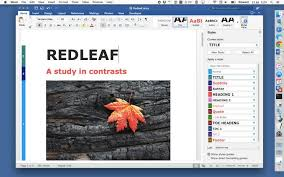 Microsoft fice 2016 for Mac Review & Rating