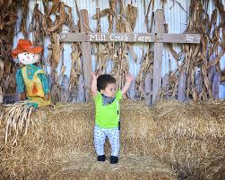 Pumpkin Patch Illinois Chicago by 6 Things To Do At Mill Creek Farm Pumpkin Patch Falling Glitter