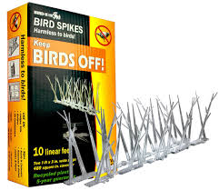 Amazon.com : Bird-X Plastic Polycarbonate Bird Spikes Kit With ... 100 How To Get Rid Of Pigeons On My Roof The Loft Design Dave Keep Birds Out Birdbgone Blog 4 Ways To Of Starlings Wikihow Dairy Barns Birdfree With 3 Tips Avian Control 25 Unique Pigeon Repellent Ideas On Pinterest Obama Care Dealing Barn Farmtek Panting In Racing When Is It Normal And Not Air Rifle Hunting 6 Shooting Pigeons Pest Control Youtube Fat Cuuute Eye Spy Bird Animal Selective Breeding Deterrents Why Uv Light May Be The Answer B