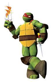 Ninja Turtle Twin Bedding Set by 1071 Best Ninja Turtles Images On Pinterest Teenage Mutant Ninja