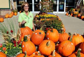 Pumpkin Patch Sioux Falls Sd by Siouxland U0027s Fall Guide To Festivals Pumpkin Patches Corn Mazes