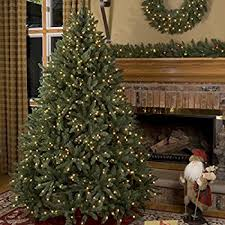 Polytree Christmas Trees Instructions by Amazon Com National Tree 9 Foot Dunhill Fir Tree With 900 Clear