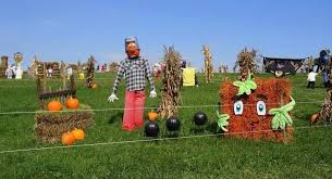 Pumpkin Patch Pittsburgh 2015 by Make The Most Of The Season With 10 Pittsburgh Fall Activities For