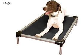 Chew Resistant Dog Bed by Best Chew Proof Dog Bed Reviews 2017 Dog Bed Answers