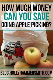 Dresser Hill Dairy Charlton Ma by Best 25 Pick Your Own Fruit Ideas On Pinterest Kids Packed