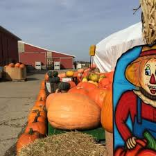 Columbus Pumpkin Patch by 100 Smith Farms Pumpkin Patch Columbus Ohio Hollin Farms