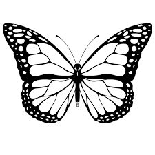 Beautiful Printable Butterfly Coloring Pages 46 On Picture Page With