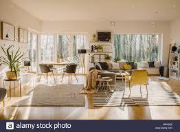 geräumig und natürlichen wohn und esszimmer interieur mit