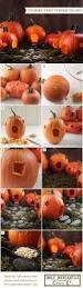 Carvable Foam Pumpkins Hobby Lobby by 20 Best Halloween Images On Pinterest Halloween Pumpkins Craft