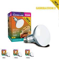 Reptile Heat Lamps Uk by Uv Heat Bulb Reptiles Ebay