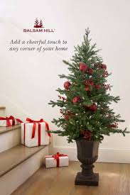 Balsam Hill Christmas Trees For Sale by 56 Best Christmas In July Images On Pinterest Balsam Hill