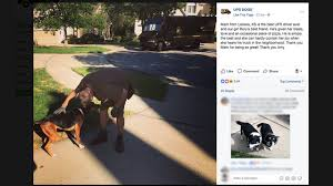 Look At This Facebook Page Where UPS Drivers Share Pics Of Dogs They ... Ups Freight Drivers May Go On Teamsterauthorized Strike Fortune Sustainability Mandates Maximum 70 Hours In 8 Days For Package Drivers Are Doctors Rich Physicians Vs Youtube The Astronomical Math Behind New Tool To Deliver Packages Is Testing Delivery Tricycles Trafficchoked Seattle Wired Look At This Facebook Page Where Share Pics Of Dogs They Government Sues Saying Ban Beards And Long Hair Violates The Extreme Super Truck Kings Of Customised Pick Ups Thatgeekdad Now You Can Stalk Your Real Time While How Stalk Your Driver Between Carpools 1