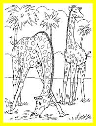 Coloring For Kids Pages Wild Animals The Best Realistic Printable