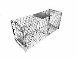 live cat trap neighborhood cats feral cat trap by tomahawk live trap model