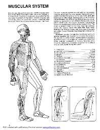 Anatomy Coloring Book Dover Luxury Human Pdf