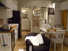 Dining Room Ideas Ikea Small Apartment Living Pinterest Sloped Ceiling Kitchen Rustic Medium Roofing Interior