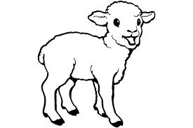 Free Printable For Peachy Ideas Goat Animal Coloring Pages Baby Best Photos Of Ba Pictures