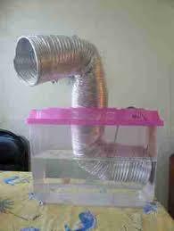 humidificateur chambre de culture jdc 1 400watts hps armoire puis placard puis box terre papaya