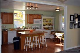 Beautiful Kitchen Remodeling On A Budget With New Cabinet Door And Low Countertop Design