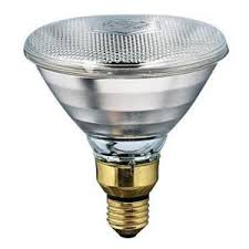 Bearded Dragon Heat Lamp Wattage by Philips 125 Watt Incandescent Br40 Heat Clear Light Bulb 416750