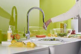 Danze Parma Stainless Steel Kitchen Faucet by Faucet Com Dh450177 In Chrome By Danze
