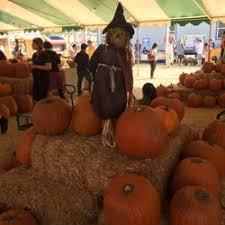 Santa Clarita Pumpkin Patch Festival by Tina U0027s Pumpkin Patch 50 Photos U0026 55 Reviews Pumpkin Patches
