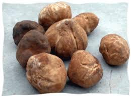 comment cuisiner la truffe la truffe ou terfass marocaine dafina