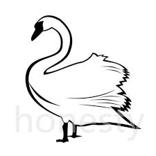 Buy Swans Silhouette And Get Free Shipping On AliExpress.com Police Florida Man Kicks Swans Sleeping Duck While Practicing Swan Hill Fire Controlled The Guardian Toyota Hilux Animal Ambulance Carries Precious Cargo Uk Creek Landscaping Crew Our Fleet Equipment Pinterest Trumpeter Invade Valley Environmental Jhnewsandguidecom Schwans Company Wikipedia Blackburnnewscom Swans Found Dead At Luther Marsh 311216 Birdlog Frodsham Birdblog Tyreswanorama Car Wrecker Valley Perth Cash For Cars Removal Suburbs Rescue Southport Visiter