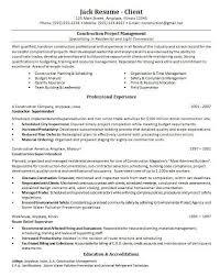 Resume Sample Project Management Samples Free