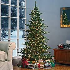Charming Ideas 9 Slim Christmas Tree Ramdom2 Kennedy Fir Artificial Classics Image Gallery Collection