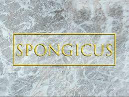 Spongebob That Sinking Feeling Full Episode by Spongicus Nickelodeon Fandom Powered By Wikia