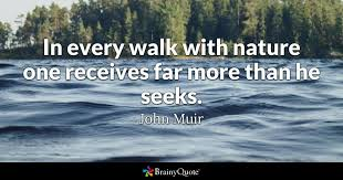 Quote In Every Walk With Nature One Receives Far More Than He Seeks
