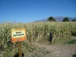 Visalia Mooney Pumpkin Patch by California Haunted Corn Maze Directory