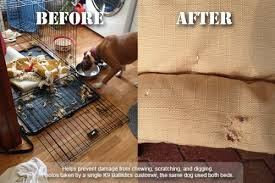 Chew Resistant Dog Bed by Best Indestructible Dog Beds Is There Really A