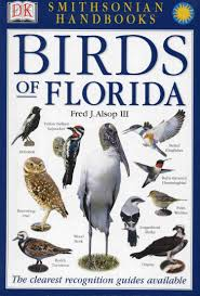 Birds Of Florida | BIRDS | Pinterest | Florida, Birds And Fields Sibleys Backyard Birds Wings And Feathers Pinterest Bird Grow These Native Plants So Your Can Feast Audubon Winter Feeding Tips For Happy And Healthy Pics Florida Wild Co Watching De My Life In A Northern Town Cedar Waxwing Birds Utah Google Search Weve Seen The Butterflies Butterflies Of New England Yok David Feeding At My Father Nature Bird Feeder Jacksonville Serenity Spell Attracting Creating Habitat For Wildlife Barn