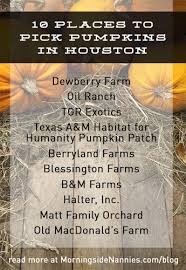 Norms Pumpkin Patch 2015 by 10 Places To Pick Pumpkins In Houston Morningside Nannies