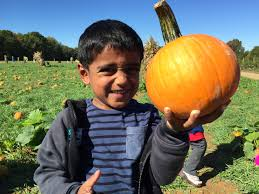Pumpkin Patch Daycare Nj by Lower Visits Von Thun U0027s Farm October 6 2015 Top