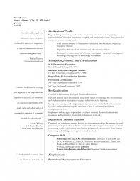 Computer Science Resume Doc Marvelous Lecturer Sample University In Marketing Position