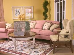 simple living room ideas for small spaces country french living
