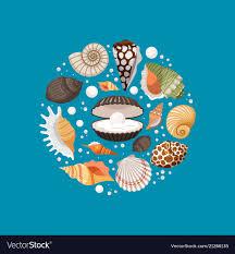 100 Sea Shell Design Cartoon Sea Shells Round Banner Design Royalty Free Vector