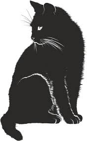 cat silhouette cats silhouette free pictures on pixabay