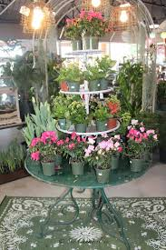 105 Best Spring Flowers From The Barn Nursery, Chattanooga, TN ... Live And Learn Navy Green Gray Nursery Tour Beddings Pottery Barn Lavender Baby Bedding With The Reserve At Groggs To Offer Gardentotable Ding 162 Best Girls Ideas Images On Pinterest Ideas Bedroom Brown Wooden Crib Laura Ashley On Bluestone Patios Landscape Great Western Supply Taking To A Whole Center Orchid Supplies In Florida Usa 13 Patio Fniture Chattanooga Tn