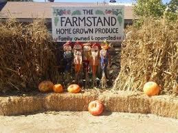 Mission Valley Pumpkin Patch by Pumpkin Patches Throughout San Diego County