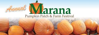 Tucson Pumpkin Patch by Marana Pumpkin Patch U0026 Farm Festival Mychurch Sahuarita